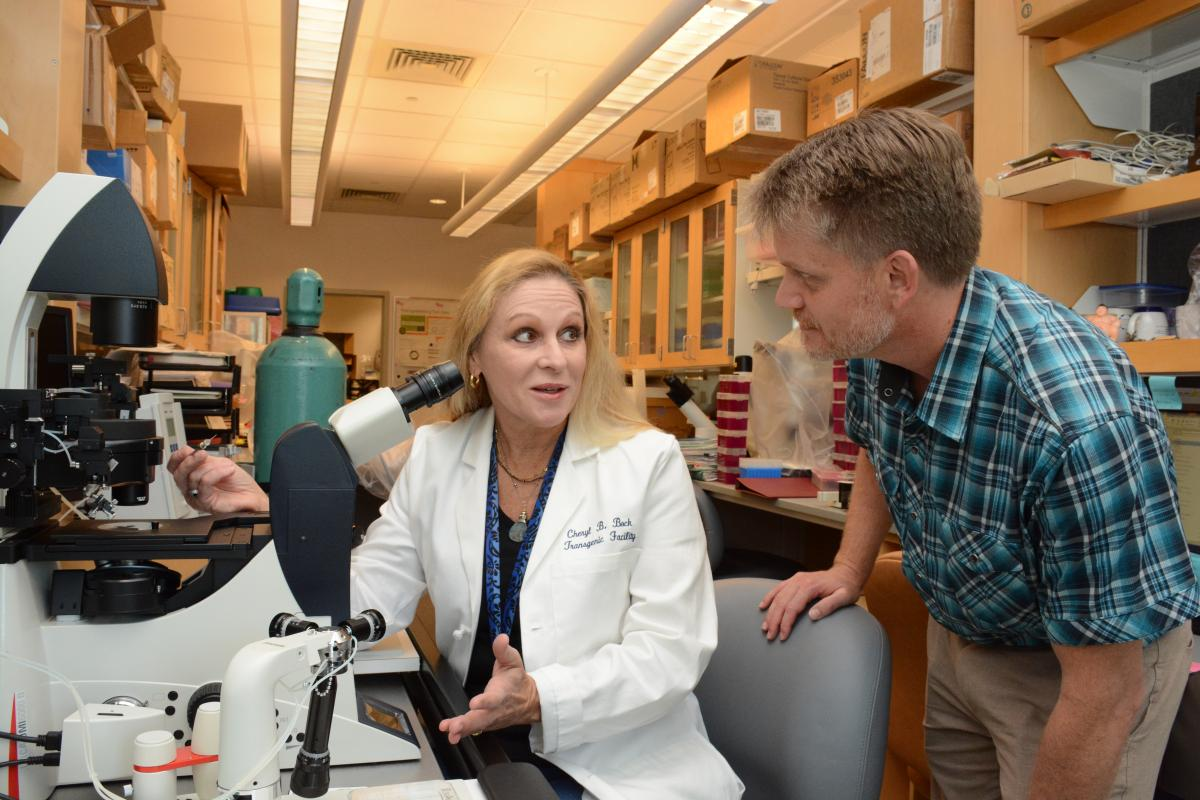 Cheryl Bock, transgenic facility manager, discusses experimental conditions with Scott Soderling, PhD, director, during a microninjection session of CRISPR regents into mouse embryos to make a knockin mouse model for a DCI member's cancer research project.