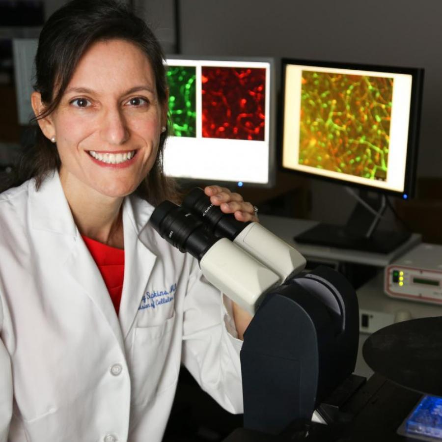 "Dorothy Sipkins, MD, PhD, uses laser scanning confocal microscopy to ""spy"" on breast cancer in real time as it spreads into the bone. Thanks to her detective work, she is developing a clinical trial of a new therapy that may force hidden breast cancer cells out of the bone marrow and back into the bloodstream, where they may be more vulnerable to treatments. (photo by Ken Huth)"