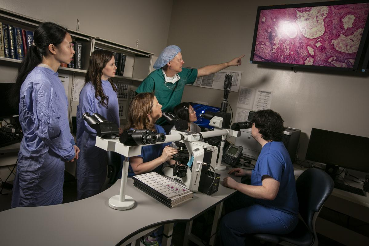 Gynecologic cancer surgeon Andrew Berchuck, MD (pointing) and Shannon McCall, MD (at microscope) analyze an image of a frozen section under the microscope that's been projected onto an HD screen.